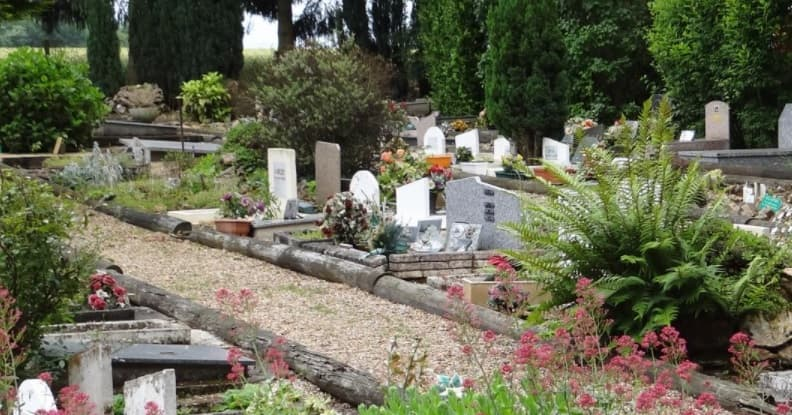 Photo d'une allée du cimetière Les Jardins du Souvenir dans l'Eure